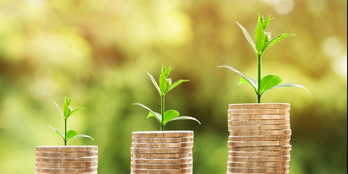 Tillväxt kräver vässade rutiner för ekonomi